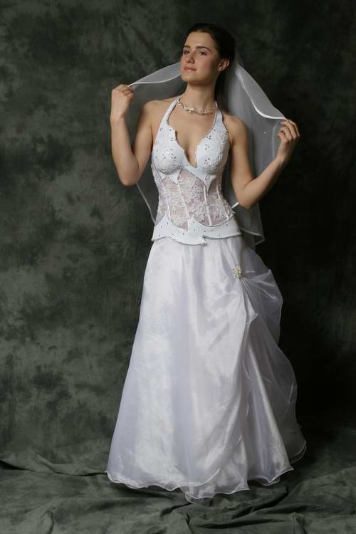 Revealing Wedding Dresses. Wedding Dresses